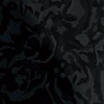 VA0202 バリアミーブラック
